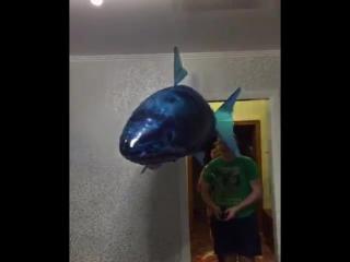 Летающий шар , акула !!!)