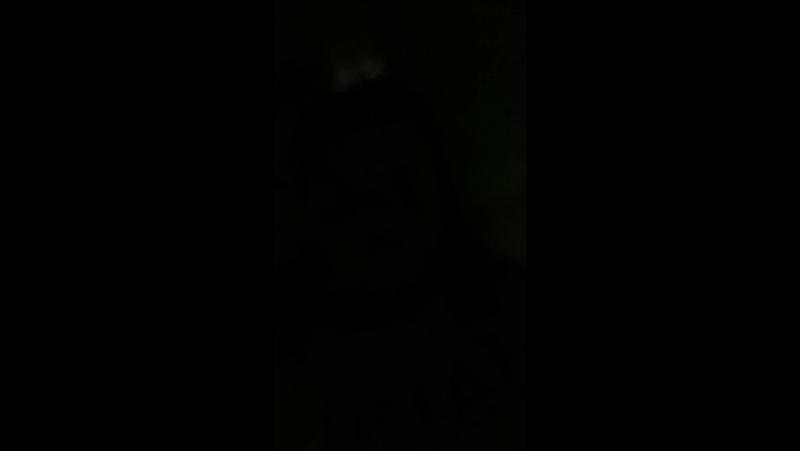 Виолетта Пасечник - Live
