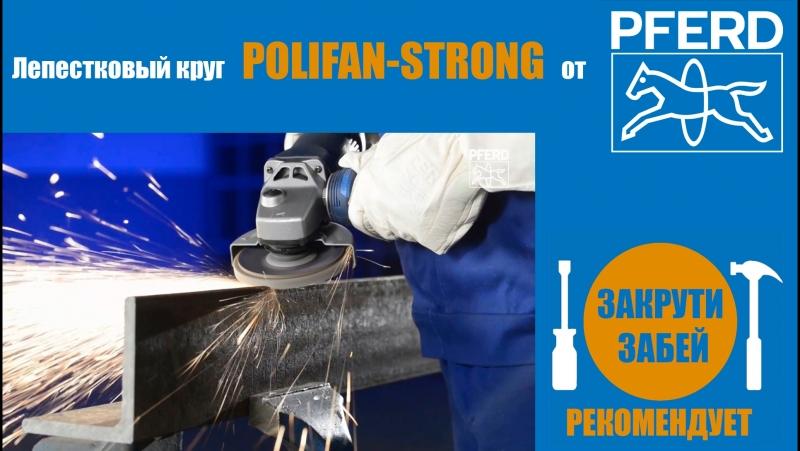 Лепестковый шлифовальный диск POLIFAN-STRONG от PFERD