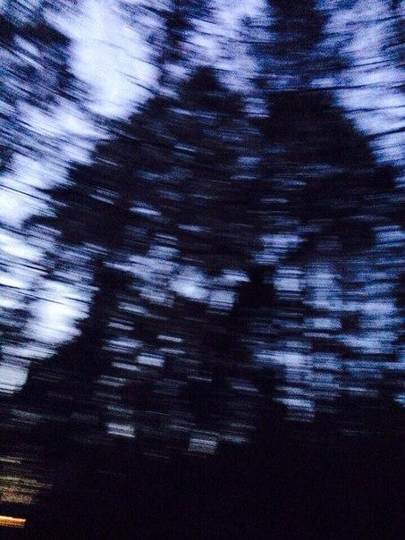 фото из альбома Алёны Шалгиной №3