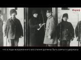 100 фактов о 1917. Как у ВРК появилось численное преимущество?