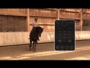 [Seaver - The first connected equipment for horses]