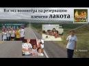 «Взгляд волонтера на резервацию племени лакота», Пенкина Е. (21.05.2017)