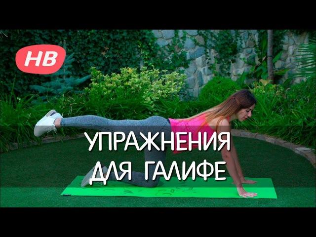 ЭФФЕКТИВНЫЕ УПРАЖНЕНИЯ для ГАЛИФЕ. Елена Силка