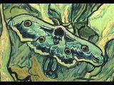 John Cameron & Paul Martin - Papillon