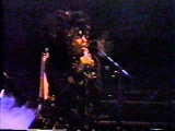 Lene Lovich - New Toy (Live 1990, Club DV8, San Francisco)