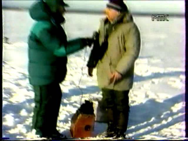 Ни хвоста, ни чешуи - Зимний Селигер