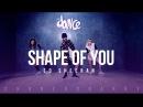 Shape of You -  Ed Sheeran - Choreography - FitDance Life