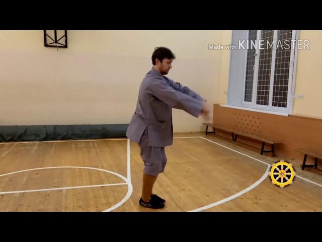 Shaolin jibengong qiezhang gongfa