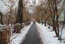 Илья Татарников фото #11
