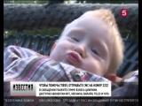 На Пятом канале День добрых дел