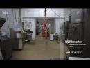 7 Tage... unter Schlachtern - NDR Fernsehen Video - ARD Mediathek
