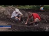 В Беловежской пуще возобновили раскопки на месте будущего скансена