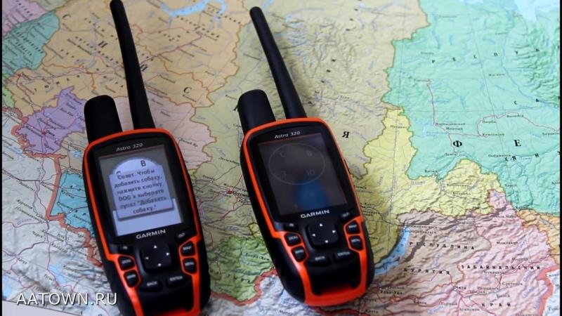 Обзор как пользоваться Garmin Astro 320 отзыв инструкция с ошейником