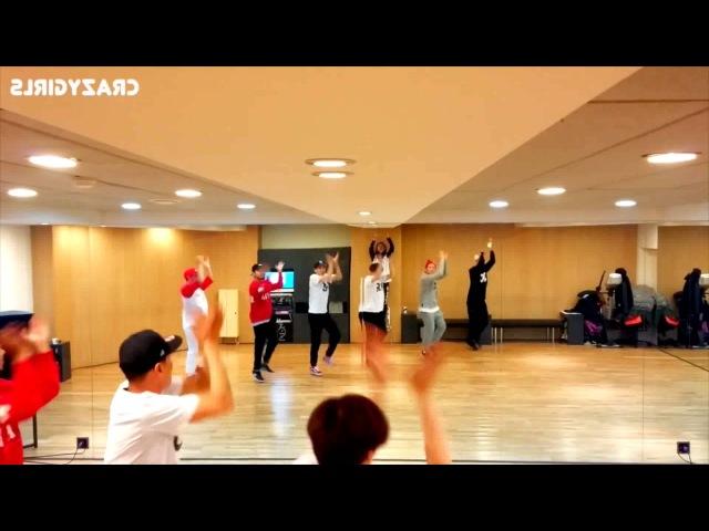 PSY - NAPAL BAJI Dance Practice Mirror