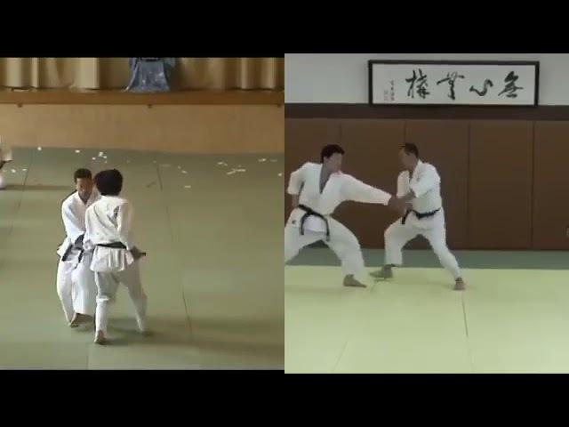 JAA Koryu Dai San v SAF Koryu Goshin Kata