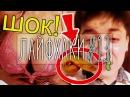 💡7 ЛАЙФХАКОВ 13 42 как стать звездой youtube, десерт с нутеллой, мини-лук и д. ф.