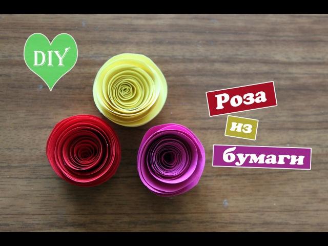 Diy: Роза из бумаги за 2 минуты / Простой способ / paper rose / Mary F