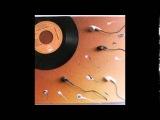 Roman Fluegel - More &amp More &amp More(Ian Pooley's New Dub)