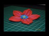 Квиллинг мастер класс цветок. Quilling flower master class.