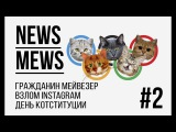News Mews #2  Олимпиада и день котституции