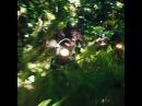 Джуманджи Зов джунглей в кино уже завтра