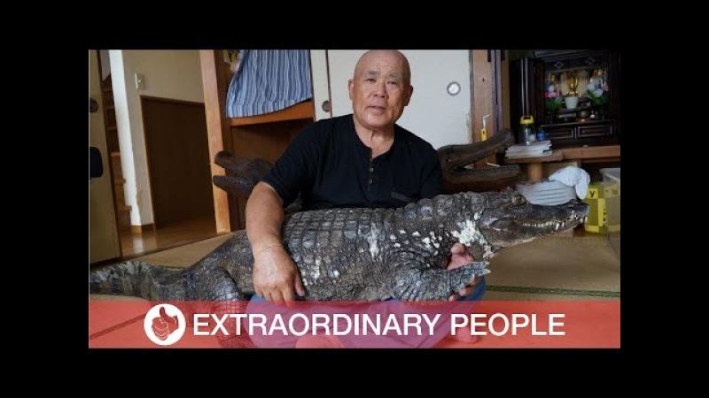 Brave Man Lives With Pet Caiman