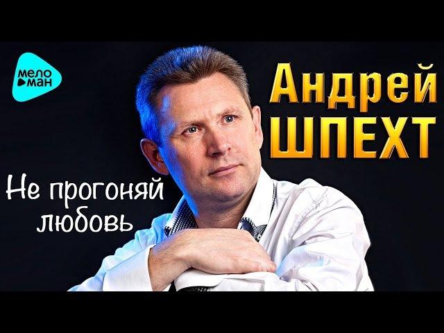 Андрей Шпехт Не прогоняй любовь Official Audio 2017