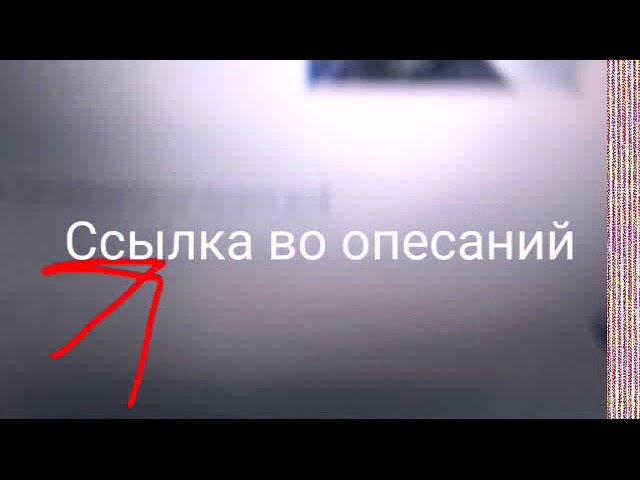 Хаски Зевс/Huski Zevs Зевс Спит