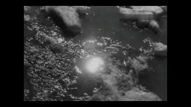 Валерий Золотухин У реки живём в тайге
