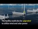 В Дании научились получать электроэнергию из морских волн