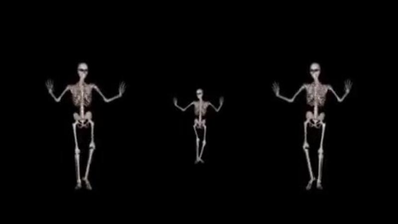 Танец живота через рентген 1