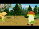 Из жизни грибов. Эпизод 1. Север и юг