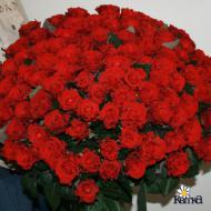 С Днем Рождения тебя поздравляю!!!!Большой букет цветов тебе дарю!!!!ЖЕЛАЮ БЫТЬ ЕДИНСТВЕННОЙ,ЛЮБИМОЙ,КРАСИВОЙ,ДОБРОЙ И ВСЕГДА СЧАСТЛИВОЙ!!!!!!!!