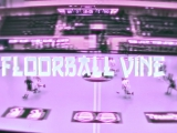 Че флорболист?Да красавчик! Floorball Vine №6