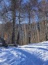 Aseke Almaty фото #9