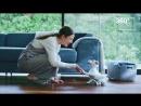 Новая версия робота-пса Aibo от Sony