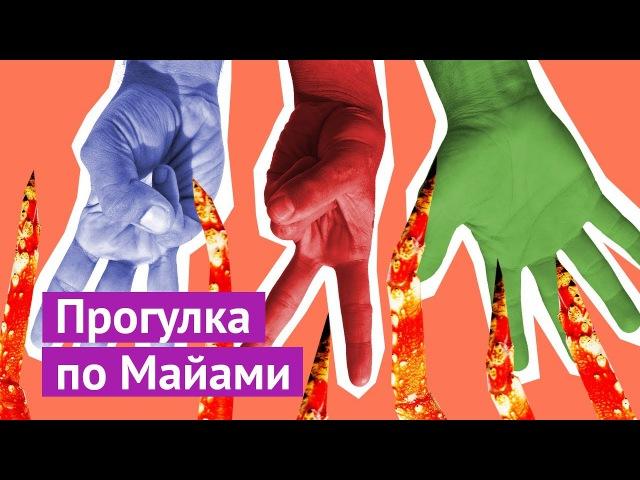 Майами: стрит-арт, украинские гитары и весёлые раввины