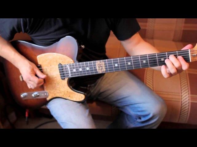 Guitarfest'12 Poznysh - Nataly Countrycaster