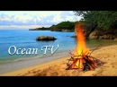 Nature Sounds 24 7 No Music 💙 Relaxing Ocean Waves Lakes Rivers for Sleeping Meditation and Study