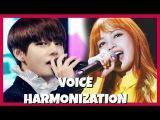KPOP IDOLS BEST LIVE VOCAL HARMONIZATIONS #1 BTS EXO BLACKPINK TWICE BTOB LOVELYZ ETC