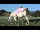 Marc Jacobs Daisy and Daisy Eau So Fresh Commercial