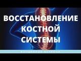 Ольга Комарова. Исцеление и восстановление костной системы Зубы, суставы, позв ...