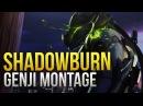ShaDowBurn - GOD Genji Montage - Overwatch Montage