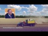 Путин допустил введение госзакупок зерна