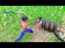 Amazing Smart Little Sister And Brother Catch Big Snakes Using Oil Tank With Water Pipe ( Part 2)