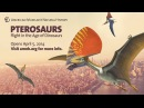 Pterosaurs Flight in the Age of Dinosaurs
