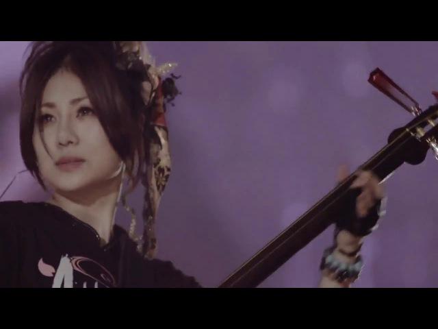 Traditional Japanese Modern Music Shamisen Ready