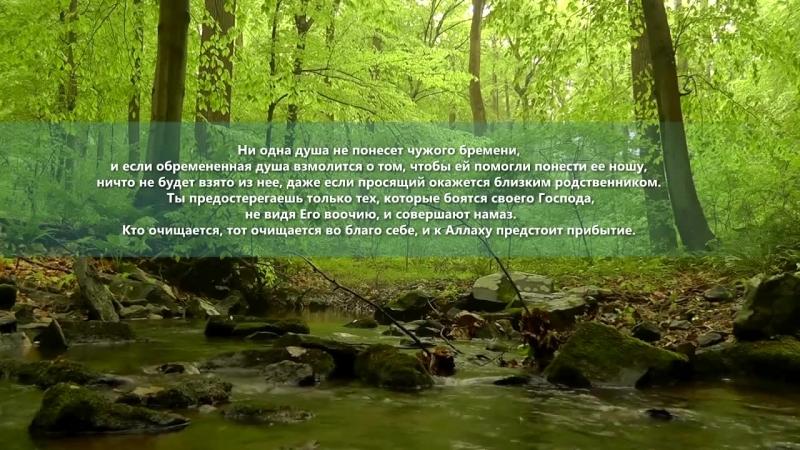 Коран Сура 35 Фатыр Творец чтец Хатим Фарид