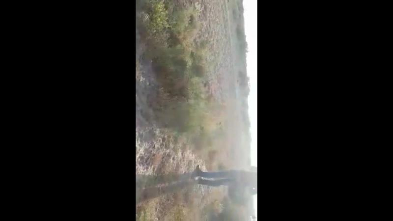 Аламан байге Кызылорда облысы Кармакшы ауданы